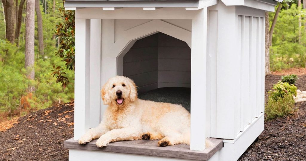 Dog House Image