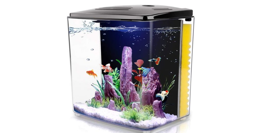 FREESEA 1.4-Gallon Fish Tank for Small Fish with Power Supply image