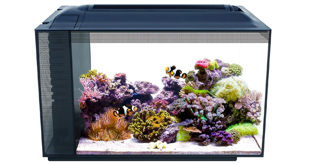 Fluval Sea Evo V Sleek and Stylish Fish Tank Aquarium image