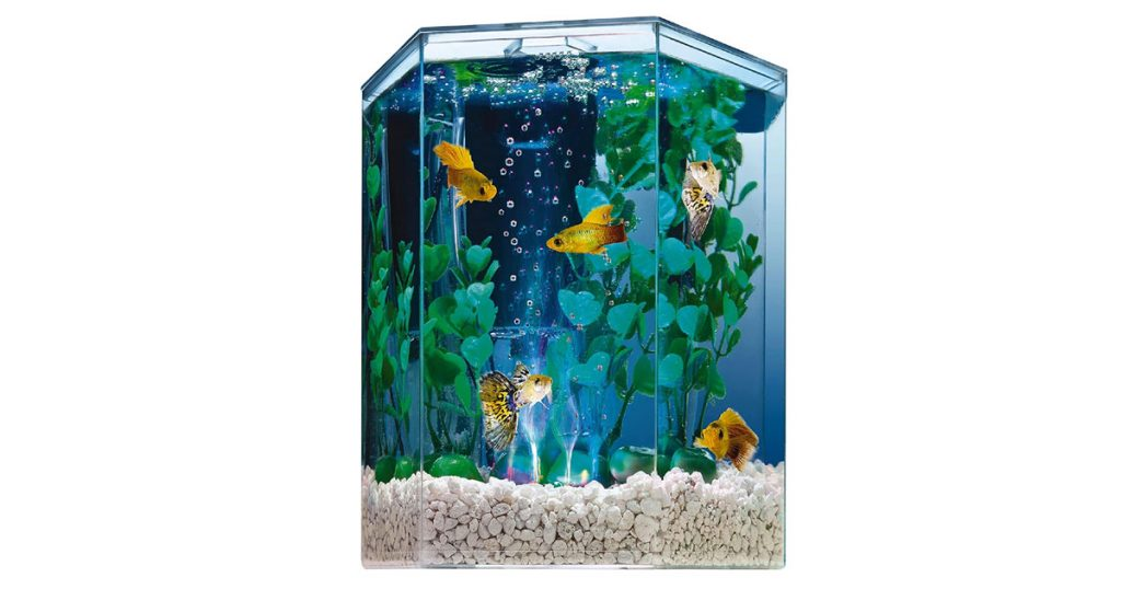 Tetra Hexagon Shape Colorful Bubbling Aquarium Kit with Filter image